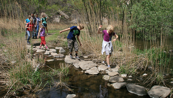stepping stones---Intelligence-Valley-stepping-stones_608x344